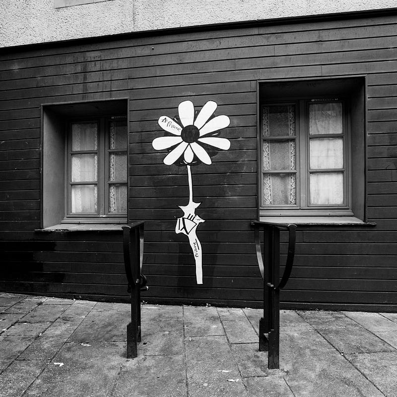 Rennes insolites-Une t'ite fleur