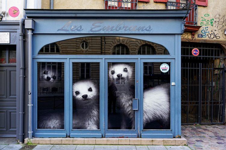 Hermines - Rue du Pré Botté
